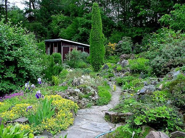 Garten,schrebergarten,parzelle,land,eigentum